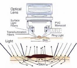 Trimodal light source