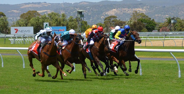 Mathematical betting on horses man of match betting sites