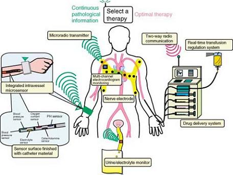 Various_Points_in_the_body_where_Biosignals_are_Monitored
