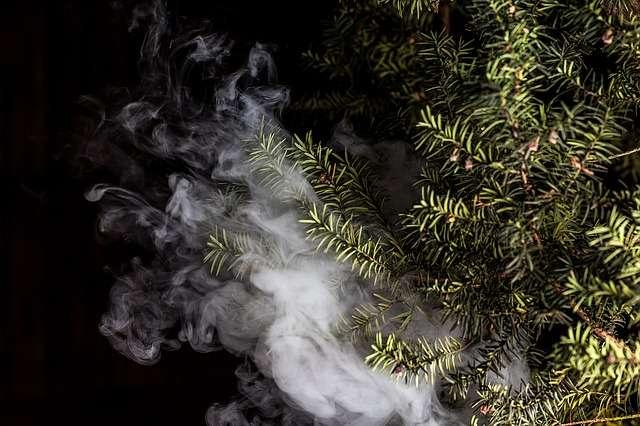 smoke and herbs