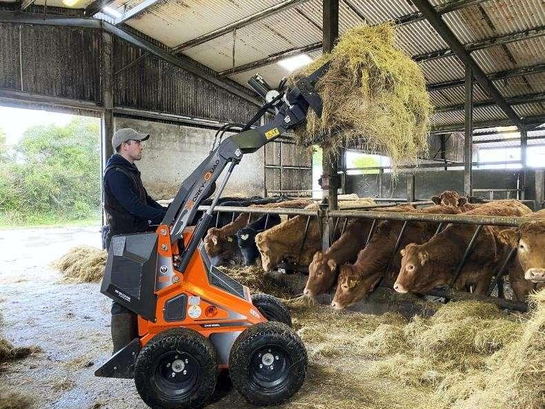 Mini Skid Steer feeding cows