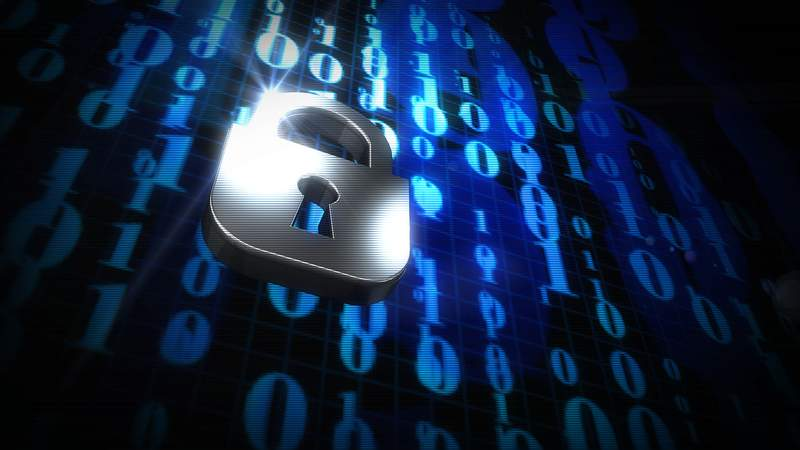 Secure Your Business Data
